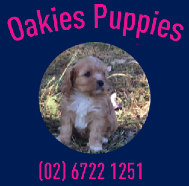 Oakies Puppies Logo